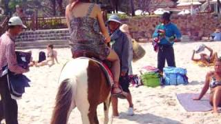 HOT GIRL AND THE HORSE !!