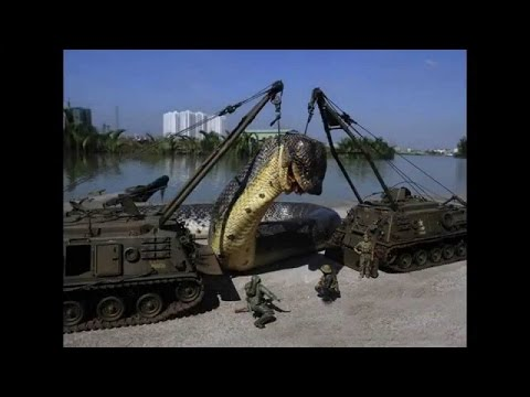 Titanoboa movie free download