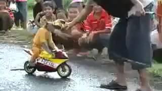 Lawak Monyet