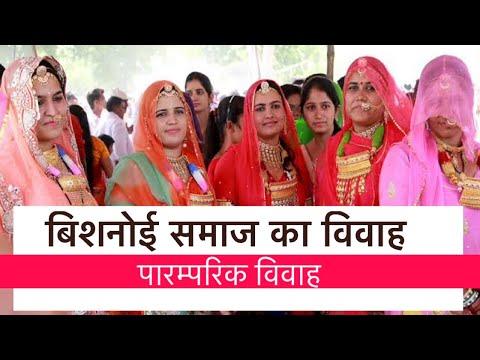 Xxx Mp4 Royal Bishnoi Wedding Rajasthani Wedding Video Bishnoi Media 3gp Sex