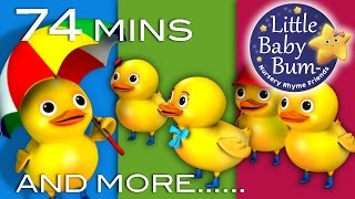 Five Little Ducks | Little Baby Bum | Nursery Rhymes for Babies | Videos for Kids