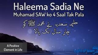 Haleema Sadia Ne Nabi(ﷺ) ko Char Saal Tak Pala - Zulfiqar Ahmad Naqshbandi - Latest Bayan