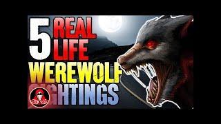 5 Real Life Werewolf Sightings!