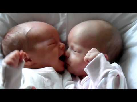 Baby girl tries to feed on twin sisters nose