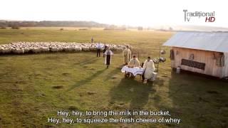 música romena com letras traduzidas