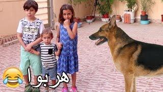 مقلب الكلب على أطفالي!