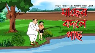 Bengali Comedy Video   Maacher Bodole Gaach   Popular Comics Series   Animated Comedy Cartoon