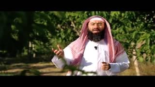 برنامج (فضائل) - الحلقة 29 - فضل التواضع و شكر النعمة وحسن الخاتمة / الشيخ نبيل العوضي