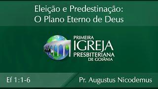 Eleição e Predestinação: O Plano Eterno de Deus