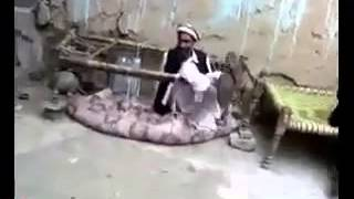 Buahahahaha         Very Funny Pathans  P P D share it   Watch or Download   DownVids net