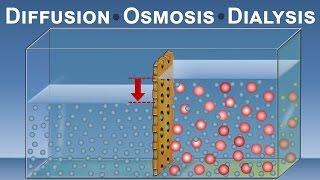 Diffusion, Osmosis and Dialysis (IQOG-CSIC)