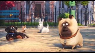 ตัวอย่างที่2 The Secret Life Of Pets : เรื่องลับแก๊งขนฟู