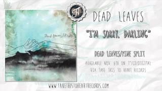 "Dead Leaves - ""I'm Sorry, Darling"""