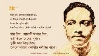 Hay Chil, Sonali Danar Chil; Lyrics by Sri Jibanananda Das and performed by Sri Anup Ghoshal