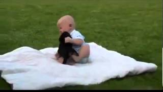 Cute Funny Videos of Dog vs Baby FIGHT