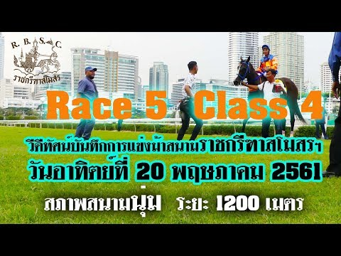 Xxx Mp4 Thailand Horse Racing 2018 May 20 ม้าแข่งเที่ยว 5 ชั้น 4 3gp Sex