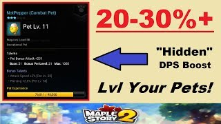 "20-30%+ ""Hidden"" DPS Increase Explained - Level Your Pets!! (Maplestory 2 Hidden Pet Info Explained)"