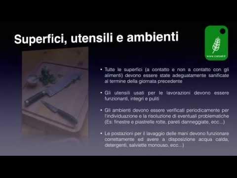 Manuale HACCP Bar e Ristorante