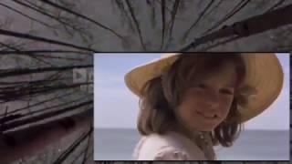 Le Lagon Bleu 1980 Film Complet En Français