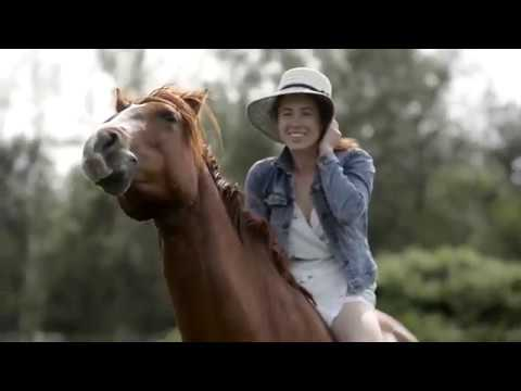 Xxx Mp4 4 Years Rescue Horse Transformation 3gp Sex
