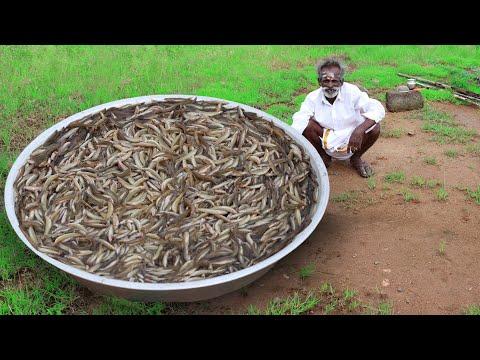 Xxx Mp4 Rare River Fish Kulambu Prepared By My Daddy Ayirameen Kulambu Village Food Factory 3gp Sex