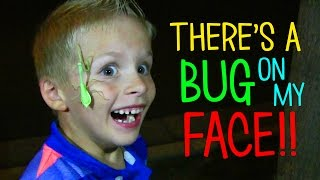 A BUG IS ATTACKING MY FACE!!!