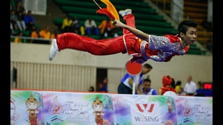 National Wushu Taolu Championship 2016 China   Amazing Shows