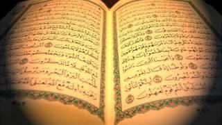 سورة يوسف / صلاح البدير