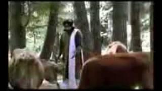Satinder Sartaaj - Nikki Jehi Kuri Mr-jatt.com.3gp