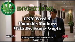 CNN WEED 2   Cannabis Madness   Dr  Sanjay Gupta Reports   2014 Documentary