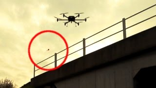 Drone shooting tranquilizer darts!