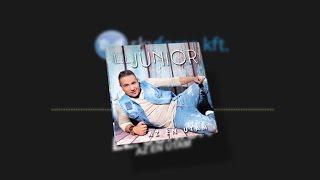 L.L. Junior - Az én utam DEMO (2016)