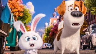 THE SECRET LIFE OF PETS Trailer, Movie Clips, Viral Videos & TV Spots (2016)