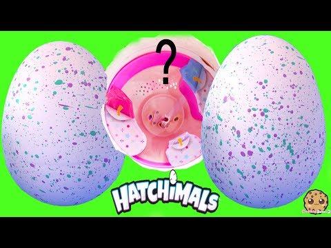 Xxx Mp4 Ponette Pony Hatchimals Hatching Egg Surprise Interactive Baby Animals 3gp Sex