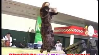 Nazia Iqbal Pashto Song | Zari Zari