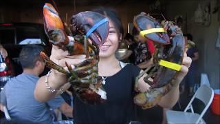 Ami ua lobster noj