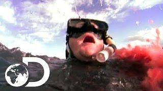 Eaten Alive - Shark Sneak Attack