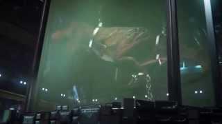 Primal Carnage Genesis PS4 Trailer