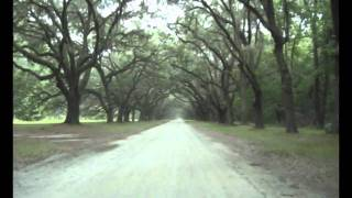 Forrest Gump's Savannah