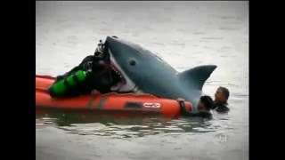 Camara escondida broma tiburon y jugueteria - camara oculta