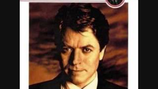 Robert Palmer-Simply Irresistible