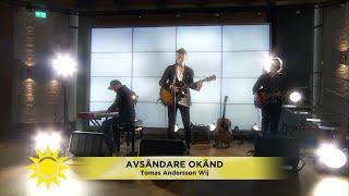 Tomas Andersson Wij spelar låten
