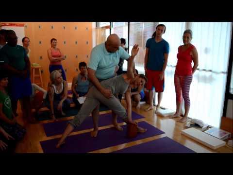 Xxx Mp4 Aadil Demonstrated The Parivrtta Trikonasana Adjustment In The 500 Hour Purna Yoga Teacher Training 3gp Sex