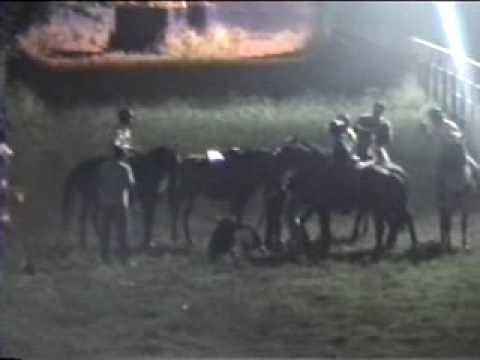 toros coleados en cagua destete