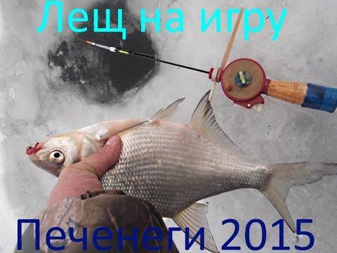 рыбаку о рыбе лещ