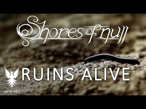SHORES OF NULL -