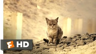 Diamond Cartel - (2017) - The Way of the Drug Lords Scene (8/10) | Movieclips