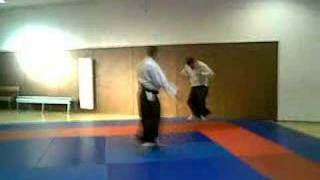 video arts martiaux michel piedoue aikido wabudo