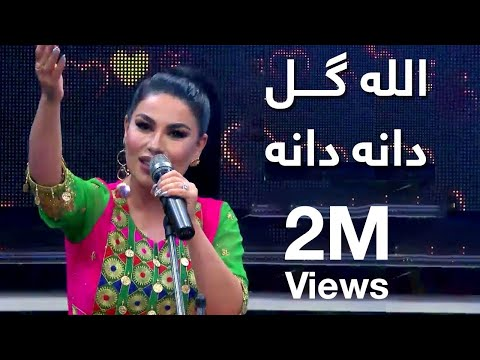 Xxx Mp4 قسیم بی آریانا اجرای آهنگ Quot الله گل دانه دانه Quot توسط آریانا سعید 3gp Sex