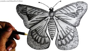 How to draw a butterfly for kids - step by step pencil drawing with narration.